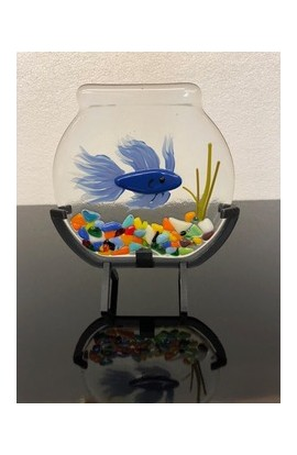 Beta Fish Bowl